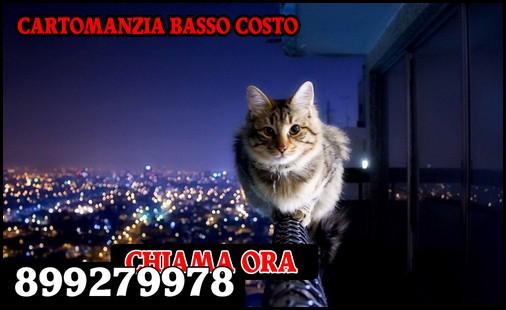 Cartomanti D'italia 899279978